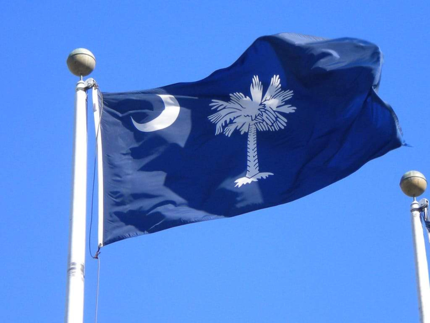 South Carolina State Flag Solid Blue with White Crescent Moon and Palm Tree