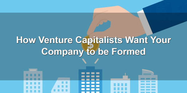 How Venture Capitalists Want Your Company to be Formed 1