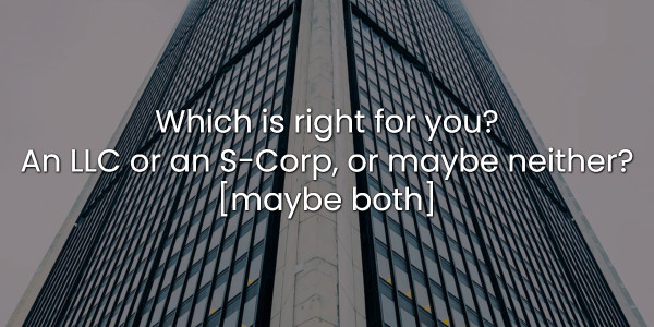 Which is right for you? An LLC or an S-Corp, or maybe neither? [maybe both] 1
